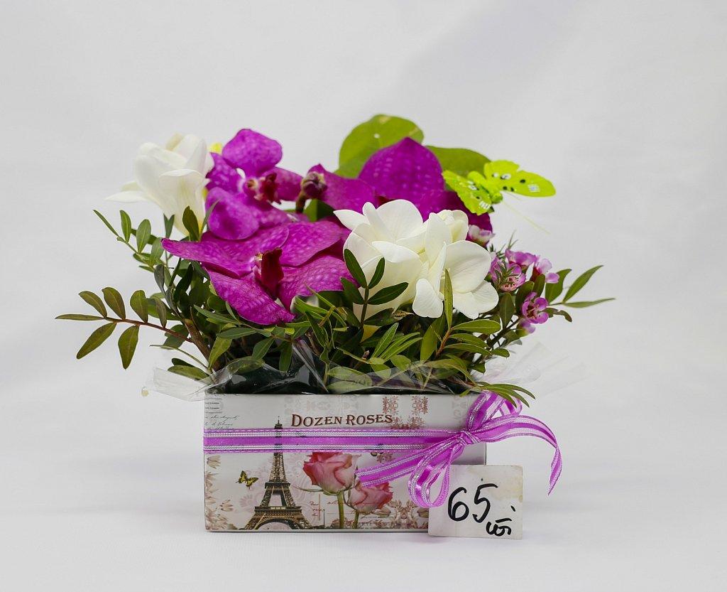 Cutie Vanda cu orhidee