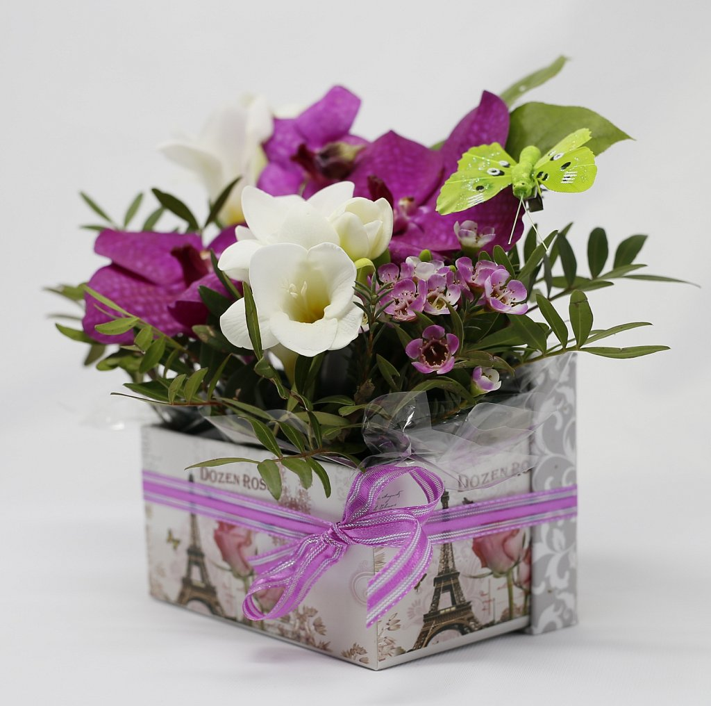 1-Cutie-Vanda-cu-orhidee6.jpg