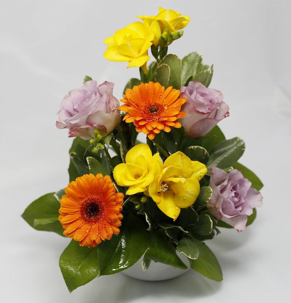 5-Bol-cu-trandafiri-minigerbera-si-frezii2.jpg